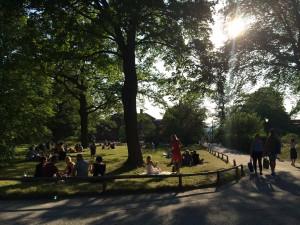 En härlig sommarkväll på Skansen.